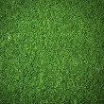 Green grass background texture — Stock Photo #52947983