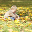 Cute little baby playing with yellow leafs in autumn park — Foto Stock #56213101