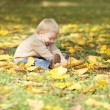 Cute little baby playing with yellow leafs in autumn park — Stockfoto #56213101
