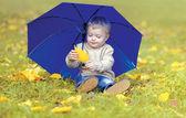 Cute little child with umbrella in autumn park — Stock Photo