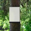 Environment and nature concept - empty board on tree in forest — Stock Photo #63697431