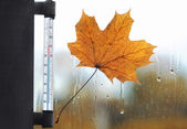 Meteorology, forecasting and autumn weather season concept - the — Stock Photo