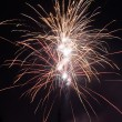Cluster of colorful Fourth of July fireworks. — Stock Photo #66375361