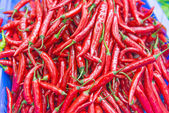 Very hot and spicy Cayenne peppers — Stock Photo