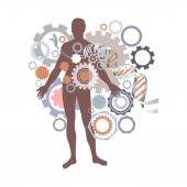 Health, man, DNA helix — Stock Vector