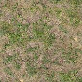 Grass Seamless Texture Tile — Stockfoto