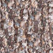 Tree Bark Seamless Texture Tile — Stockfoto