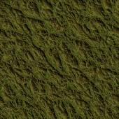 Mossy Ground Seamless Texture Tile — Stock Photo