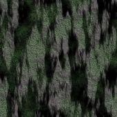 Tree Bark with Moss Seamless Texture Tile — Stock Photo