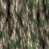 Corteza de los árboles con el azulejo de la textura sin fisuras musgo — Foto de Stock