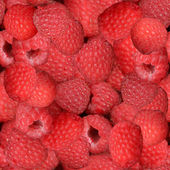 Raspberries Seamless Texture Tile — Foto de Stock