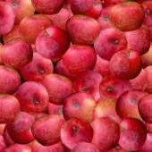 Apples Seamless Texture Tile — Foto de Stock