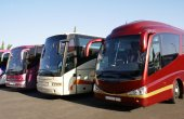 Buses. coaches — Stock Photo