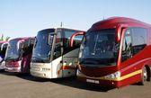 Buses. coaches — Stock Photo