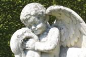 Cherub statue. angel statue — Stock Photo