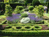 Garden art. garden design. — Stock Photo