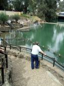 Man looking at the Yardenit Baptismal Site, Israel, Middle East — Stock Photo