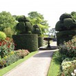 Sculptured fountain. yew topiary. garden pathway — Stock Photo #58589909