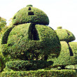 Yew topiary. topiary. topiary trees — Stock Photo #59749057