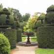 Sculptured fountain and yew topiary in a garden — Stock Photo #61877633
