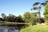 Lakeside scene, Croome Landscape, High Green, Worcester, Worcestershire, England — Stock Photo
