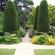 Yew topiary trees and garden pathway — Stock Photo #68702493