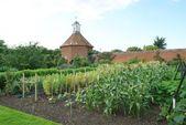 Garden in Felbrigg, Norfolk, England — Stock Photo