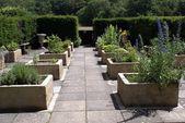 Caminho de jardim. Jardim do Castelo de Herstmonceux em Herstmonceux, East Sussex, Inglaterra — Fotografia Stock