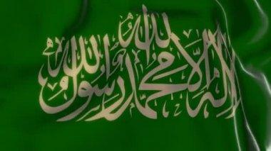 Hamas flag — Stock Video