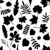 Neri foglie — Vettoriale Stock