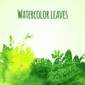 Watercolor leaves — Stock Vector