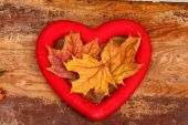 Autumn love heart, autumn leaves — Stok fotoğraf