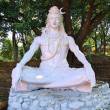 Shiva statue in Rishikesh, India — Stock Photo #63062131