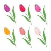 Illustration set of beautiful colour flowers. Vector — Wektor stockowy