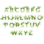 Illustration eco alphabet. Vector — Stock Vector