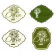 Illustration set of label with olive tree. Vector — Stock Vector #59053787