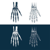 Set of skeleton hands — Wektor stockowy