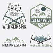 Set of vintage labels mountain adventure with snow leopard — Stock Vector