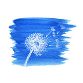Watercolor graphic dandelion. Vector  — 图库矢量图片