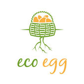 Illustration of eco eggs in basket with root. Vector — Stock Vector
