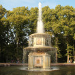 Постер, плакат: Walk in Peterhof the kingdom of fountains and parks