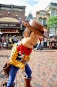 Woody cowboy — Stock Photo