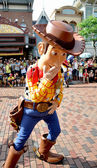Woody — Stock Photo