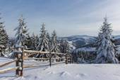 Winter Carpathians — Stockfoto
