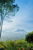 Kawah Ijen Volcano, Indonesia — Stock Photo