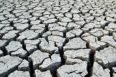 干燥开裂的土壤背景, — 图库照片