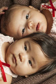 Two babies — Stock Photo