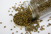 Mung beans in a jar on white  table with lid off — Foto Stock