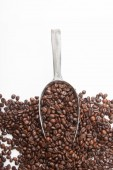 Roasted coffee beans with transfer scoop — Stock Photo