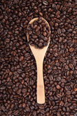 Roasted coffee beans with wooden spoon — Stock Photo